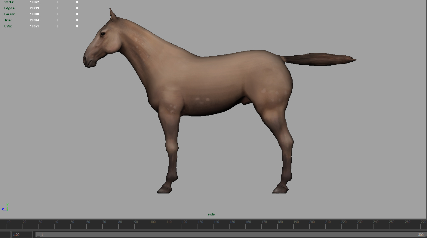 horse textures